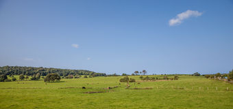 Welsh countryside Stock Images