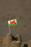 Welsh dragon Stock Image
