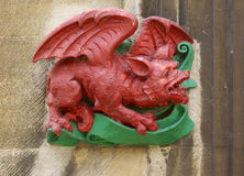 Welsh dragon Stock Photography