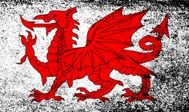 Welsh Dragon Grunge. The Welsh Dragon isolayed over a white background Royalty Free Stock Image