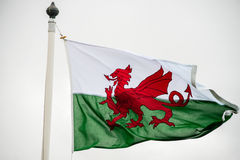 Welsh flag Stock Photo