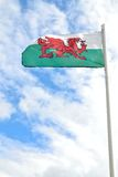 welsh flag Royalty Free Stock Photos