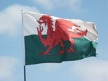 Welsh Flag flying Royalty Free Stock Photo