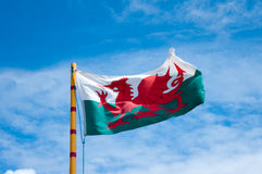 Welsh flag. Showing the red dragon of Wales flying in the summer sun Royalty Free Stock Photography