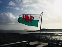 Welsh flaga obrazy stock