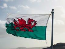 Welsh flaga zdjęcie stock