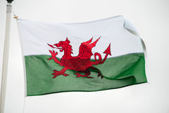 Welsh flaga Obraz Royalty Free