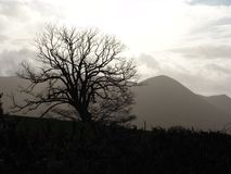Free Welsh Hills In Winter Royalty Free Stock Photo - 326625