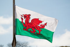 Welsh National Flag Flying in the Wind against Blue Sky. Welsh National Flag Flying in the Wind, Llandudno, Wales, UK royalty free stock photo