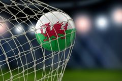 Welsh soccerball in net. Image of Welsh soccerball in net Stock Images