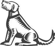 Welsh Terrier Sitting Woodcut. Illustration of a welsh terrier dog sitting looking up viewed from side set on isolated white background done in retro woodcut Stock Images