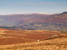 Welsh Valleys Landscape Royalty Free Stock Photo