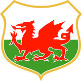Welsh wales red dragon shield. Illustration of a red welsh wales dragon with shield in background Stock Photos