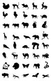 Welt des Tieres Stockfoto