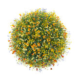 Welt gemacht mit Blumen, grüne Welt vektor abbildung