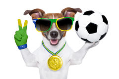 Weltcuphund Brasiliens FIFA Stockbild
