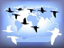 Weltflug Stockbild