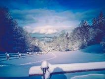 Weltschönheit Winter Pieniny Polen Stockfoto