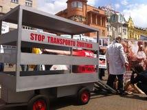 Welzijn van dieren demonstratie Stock Afbeelding