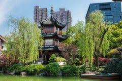 Wen Miao Confucius Shanghai świątynna porcelana Fotografia Royalty Free