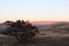 Wenatchee area sunset Stock Image