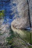 Wenatchee för is för vintersidasnö flod Leavenworth Washington arkivfoto