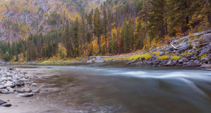Wenatchee River in the Fall Royalty Free Stock Photography
