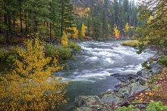 Wenatchee River rapids. Stock Photos