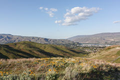 Wenatchee from Sage Hills Trail Royalty Free Stock Photography