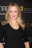 Wendi McLendon-Covey. LOS ANGELES - JAN 14: Wendi McLendon-Covey arrives at the BAFTA Award Season Tea Party 2012 at Four Seaons Hotel on January 14, 2012 in royalty free stock photos