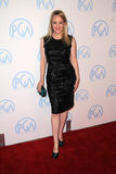Wendi McLendon-Covey at the 23rd Annual Producers Guild Awards, Beverly Hilton, Beverly Hills, CA 01-21-12 Royalty Free Stock Photography