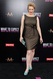 Wendi McLendon-Covey arrives at the. LOS ANGELES - MAY 14: Wendi McLendon-Covey arrives at the What To Expect When You're Expecting Premiere at Graumans Chinese stock images