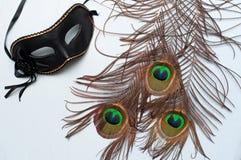 Weneccy karnawału pawia i maski piórka Obraz Royalty Free