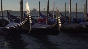 Wenecja gondole i łódkowaty ruch drogowy z wyspą Giudeca w tle zdjęcie wideo