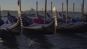 Wenecja gondoli zwolnione tempo i łódkowaty ruch drogowy zdjęcie wideo