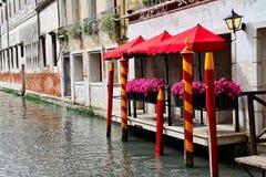 Wenecja kwiaty Zdjęcie Royalty Free