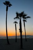 Wenecja plaży zmierzch zdjęcia royalty free