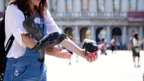 Wenecja Włochy, Lipiec, - 7, 2018: portret szczęśliwa kobieta, turysta, trzyma gołębie dalej, karmienie, sztuka z one, mieć zabaw zbiory