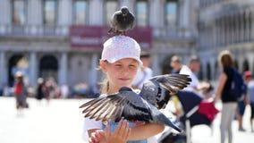 Wenecja Włochy, Lipiec, - 7, 2018: widok szczęśliwa dzieciak dziewczyna, turysta, trzyma gołębie dalej, karmienie, sztuka z one,  zdjęcie wideo