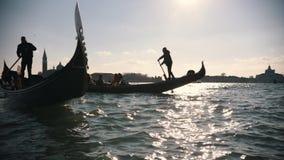 Wenecja Włochy, 11-11-2018: Turyści żegluje na gondolach na słonecznym dniu Włochy swobodny ruch zbiory wideo