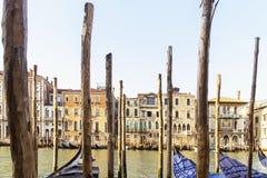 Wenecki port z gondolami w ranku czekaniu dla turystów Obraz Stock