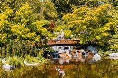 Wenen, Oostenrijk - Mei 12, 2018: Japanse tuin met houten brug en mooie waterval royalty-vrije stock foto's
