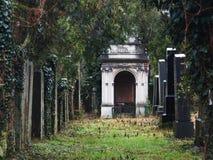 Wenen Oude Cementery Royalty-vrije Stock Afbeeldingen