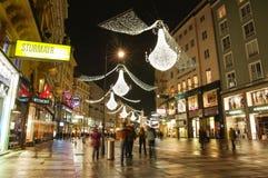 Wenen - toeristen op beroemd Stock Fotografie