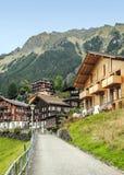 Wengen i de schweiziska fjällängarna Fotografering för Bildbyråer