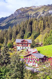 Wengen in the swiss Alps. Wengen  in the swiss Alps, in a valley with rural houses, in the background are mountains on a cloudy day.It´s a vertical picture Royalty Free Stock Images