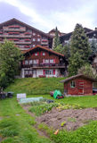 Wengen in the swiss Alps. Wengen  in the swiss Alps, in a valley with rural houses, on a cloudy day Royalty Free Stock Photo