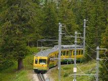 Wengen, Szwajcaria 08/17/2010 Stojak kolej prowadzi Jungfraujoch obraz stock