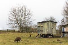 Wenig Bauernhof im Dorf Lizenzfreie Stockbilder