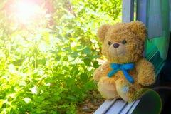 Wenig betreffen das Fenster mit grünem Blatthintergrund Lizenzfreie Stockfotos